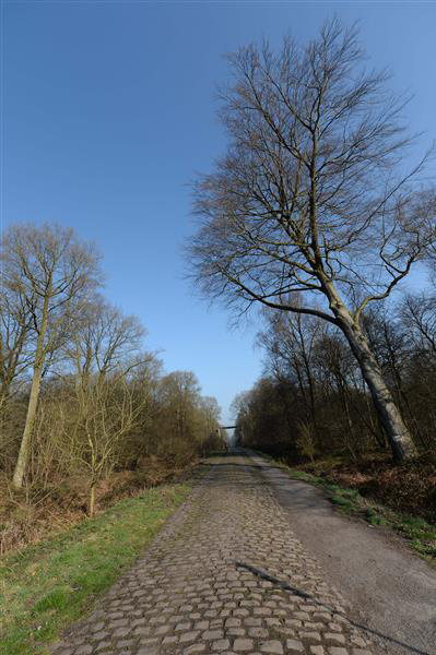 The Arenberg