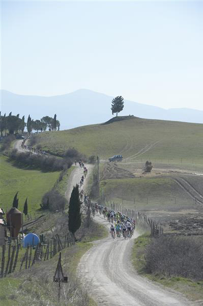 The pack rides on the white roads of Tuscany